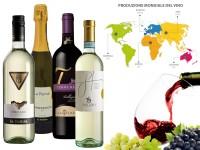 Produzione di vino nel mondo