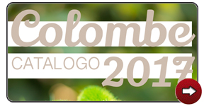 Catalogo Colombe 2017